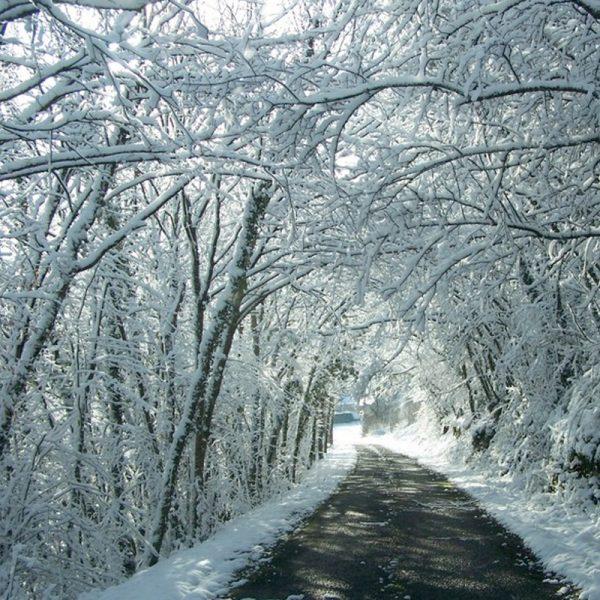 Location gite dordogne vacances toute anne hiver Barbeyroux Neige